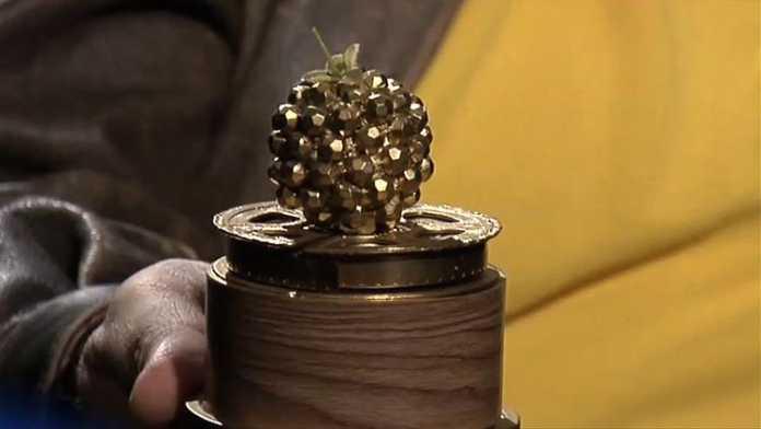 Premios Razzie 2016 - Cincuenta sombras de Grey peor película y peores actores del 2015
