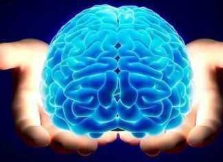 El conflicto entre ciencia y religión se halla en en el cerebro