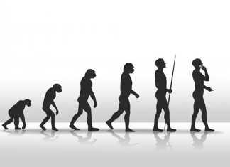 Los hombres modernos carecen de los genes del cromosoma Y del Neandertal