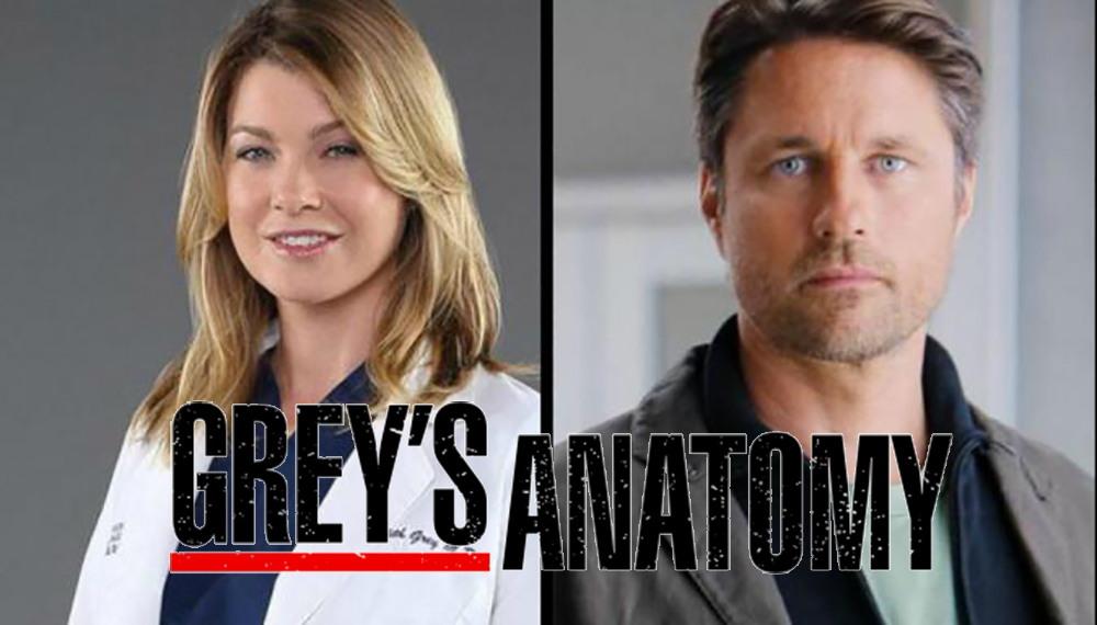 Ver series y novelas greys anatomy temporada 12 - Free download one ...