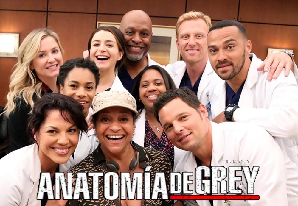 Anatomía de Grey temporada 13, Fecha de estreno e información ...