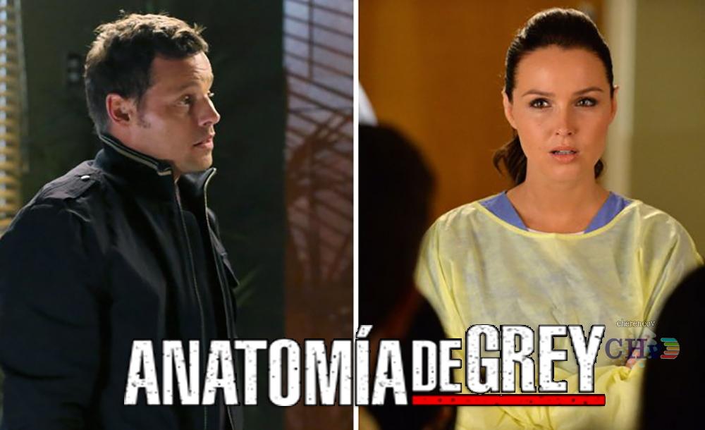 Anatomía de Grey Temporada 13, ¿nuevos personajes? | Cherencov.com