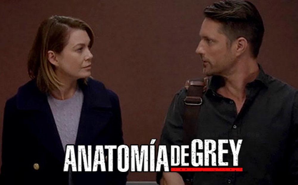 Resultado de imagen de anatomía de grey temporada 13