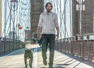 'John Wick 2' primera imagen del nuevo perro de John