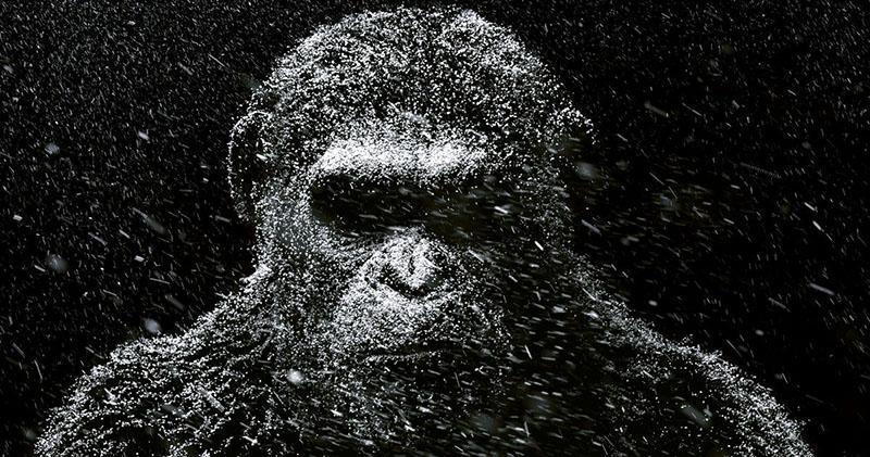Películas recomendadas muy buenas para ver en 2017 - 16 'La Guerra del Planeta De los Simios'