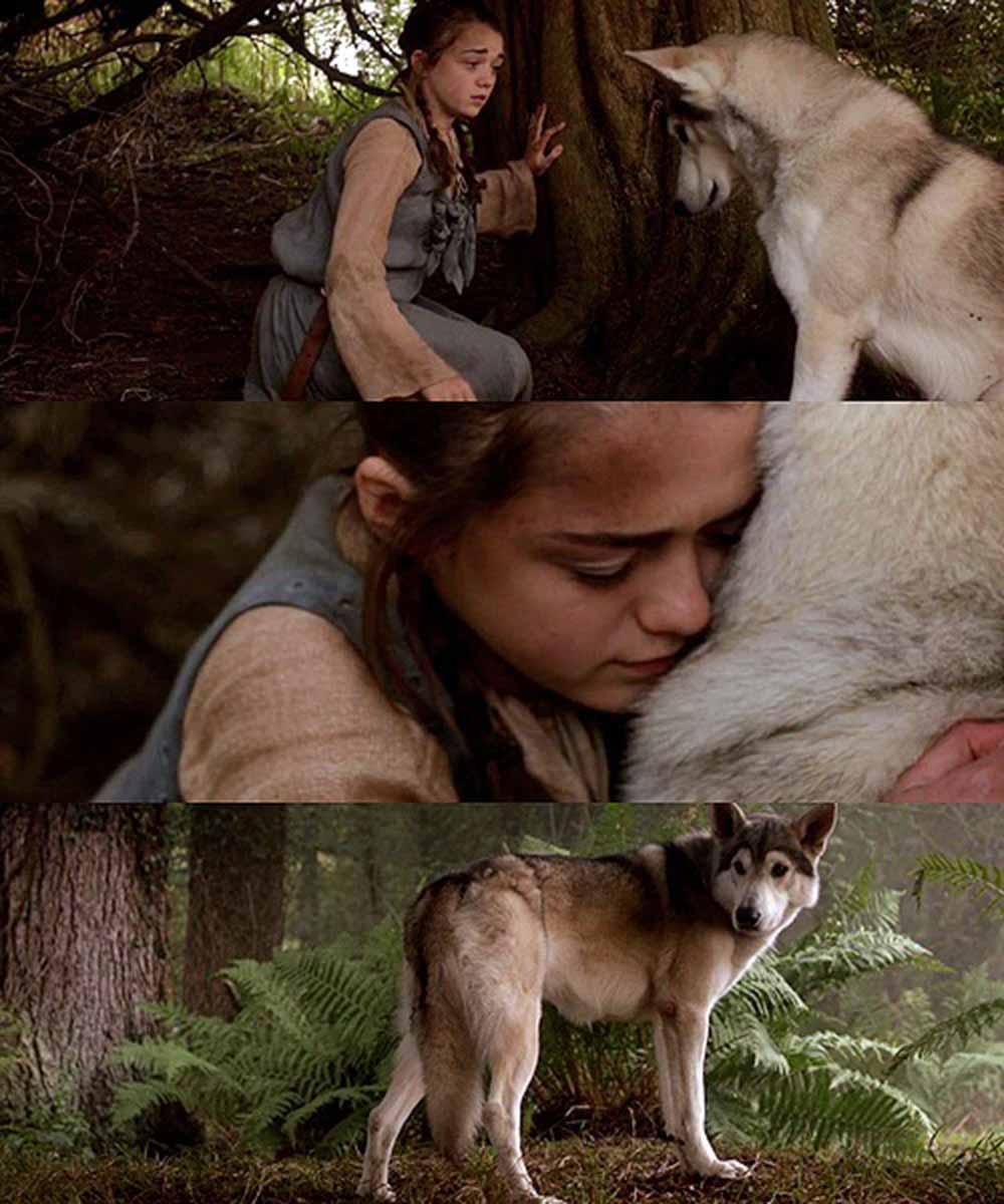 Arya y Nymeria
