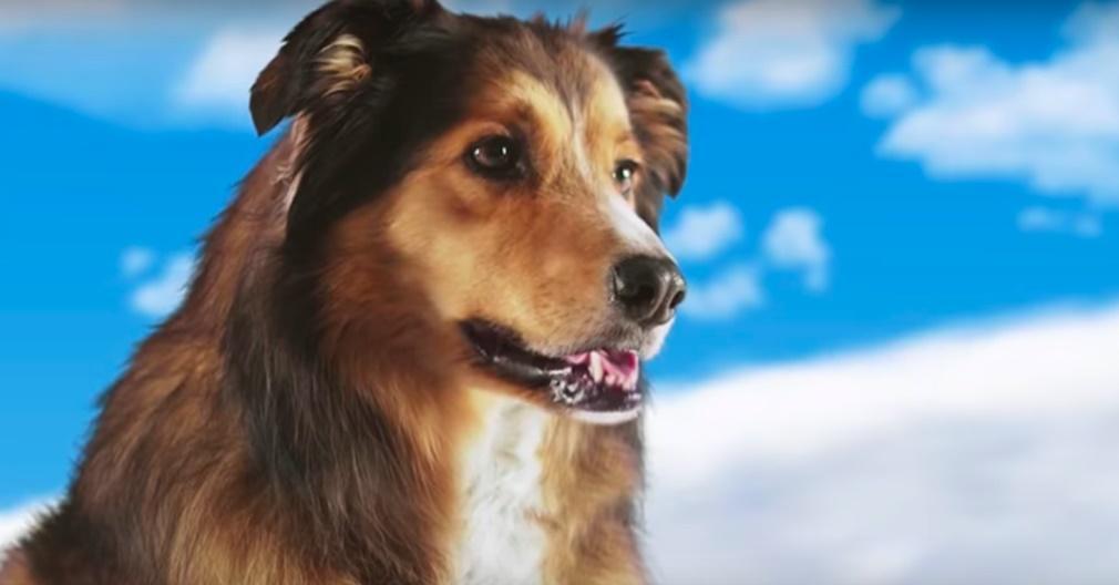 'Best Friend From Heaven' considerado el tráiler más raro del año