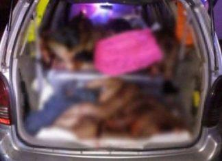 Localizan nueve cuerpos descuartizados en una camioneta
