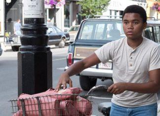 Castle Rock incorpora a otro actor de 'It', Chosen Jacobs