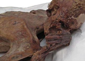 Tatuajes más antiguos localizados en momias egipcias de 5.000 años de antigüedad