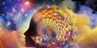La droga psicodélica puede cambiar la personalidad por años