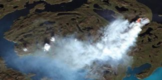 Mayor incendio forestal en la isla de Groenlandia